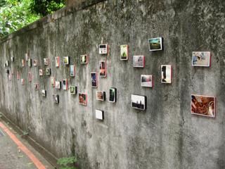 中山street壁.jpg