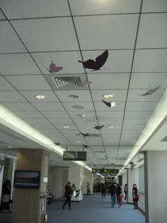 松山機場2.jpg